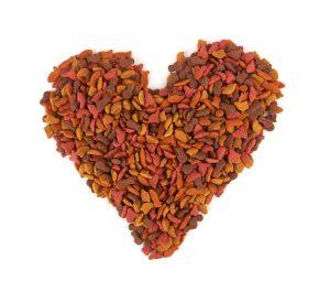Ernährung von Herzpatienten - Herz aus Trockenfutter
