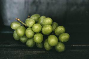 Trauben - Vergiftung Niere